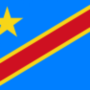 Democratic republic dongo