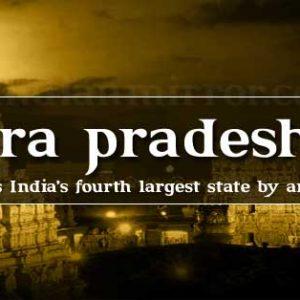 Andhra Pradesh-Ribbon blender manufacturer